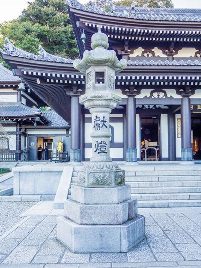Hase-dera temple in the city of Kamakura, Kanagawa Prefecture, Japan. Buddha Hase-dera TEMPLE Japan Kamakura Japan Kamakura Station Day Hase-dera Monkey Religion Temple