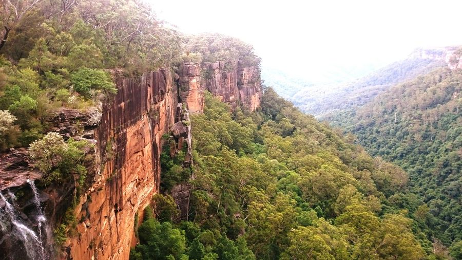 Fitzroy Falls Australian Landscape National Park Amazing Nature Cliffs And Green Rocks And Forest