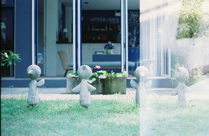 Beautiful Mistake. Filmphotography Streetphotography Double Exposure Filmneverdies Colour Of Life