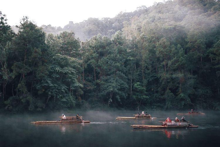 People on wooden rafts in lake against trees in forest