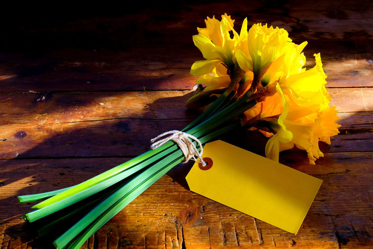Message To The World Blank Space Bouquet Close-up Daffodil Daffodils Flowers Day Flower Flower Head Fragility Freshness High Angle View Indoors  Label Nature No People Paper Room For Text Table Text Space Wood - Material Yellow