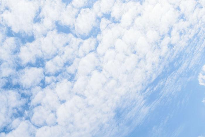 Cloud Cloudporn Cloudscape Fleecy Clouds Heaven Himmel Himmel Und Wolken Hochgeschaut Lookingup Nature Nature Photography Naturelovers Nikon Nikonphotography Schäfchenwolken Sky Sky And Clouds Skylovers Skyporn Wolken Wolkenhimmel