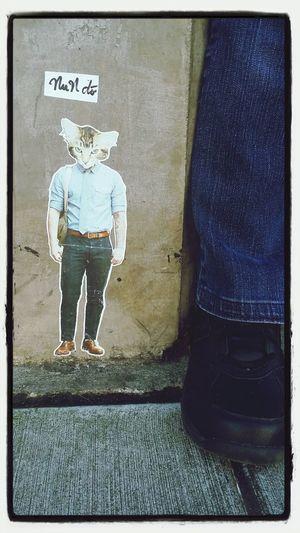 Cathead Bad Fashion