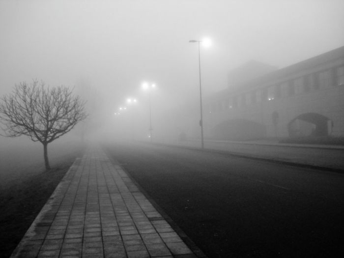 Spooky Foggy Night Streetphotography Fog Winter Weather Night Street Light Cold Temperature Outdoors No People Illuminated Bare Tree