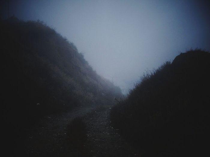 Thick Roadtonowhere Autumn 2015 30novembre дорога в никуда туман последний день осени Россия