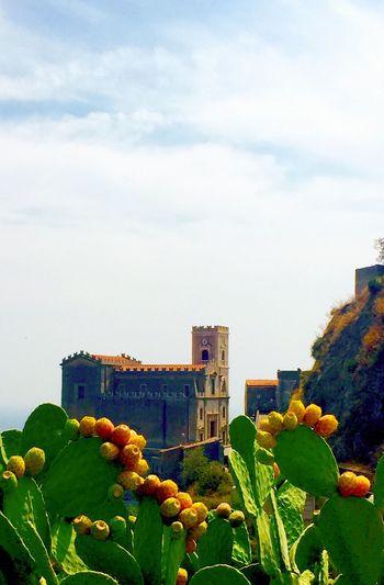 Sicily Sicilia Italia Italy Fichi D'india Fichidindia Cactus Savoca Church Il Padrino Blue Sky Green Live For The Story Summer Exploratorium