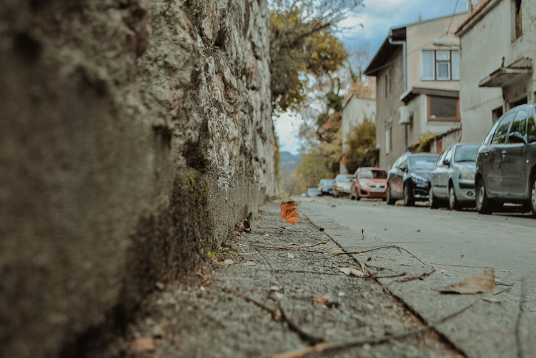 Day No People Nature Outdoors Bosnia And Herzegovina Sarajevo Streetphotography Street Street Photography Autumn Autumn colors autumn mood Canonphotography Canon Built Structure Architecture Selective Focus Building Exterior City Building Transportation Tree Mode Of Transportation Motor Vehicle Land Vehicle Car House Tree Trunk Surface Level