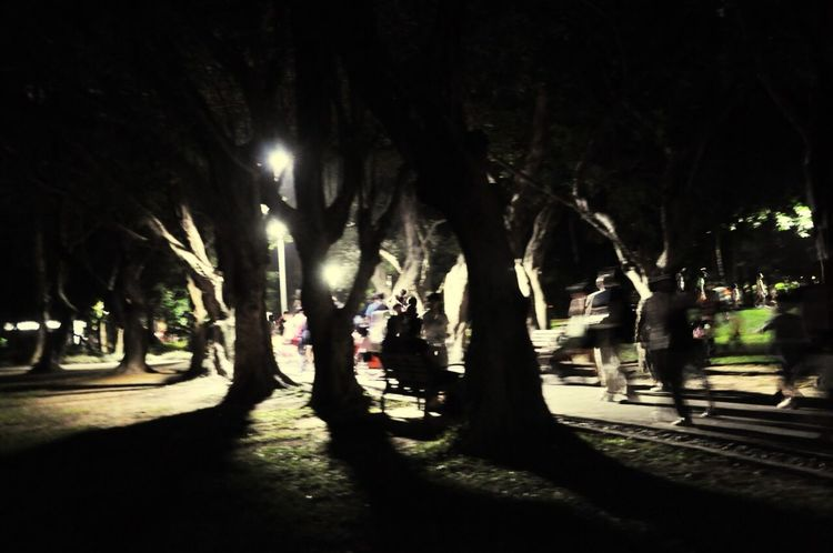 Outdoors The View And The Spirit Of Taiwan 台灣景 台灣情 Night Park The City Light City Life People