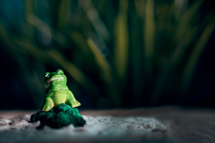 Toy frog on green rock in sand