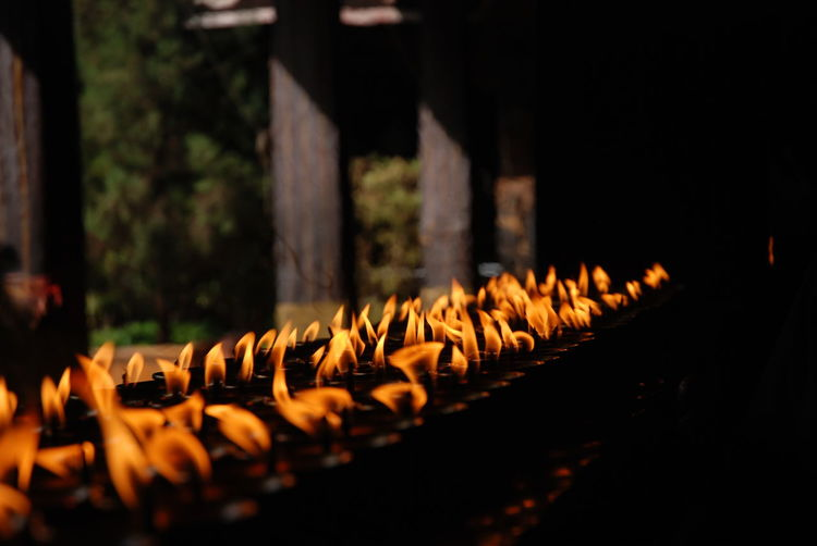 Close-up of lit candles at buddhist temple