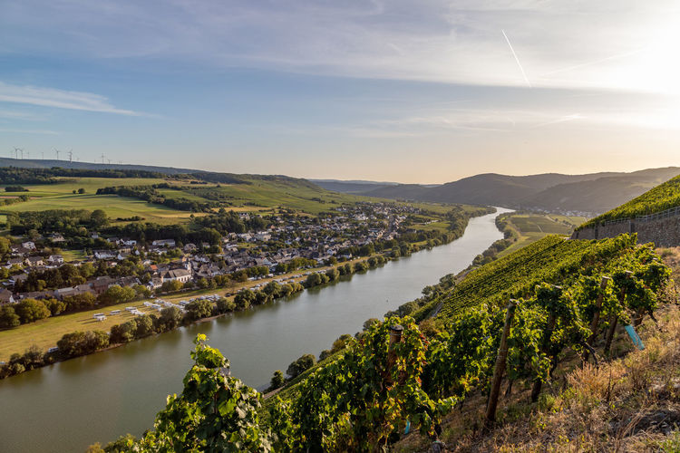Panoramic view of the moselle valley with the wine village brauneberg in the background