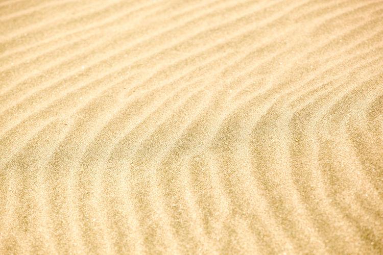 Sand background texture Desert Textured  Background Background Texture Background Textures Backgrounds Beach Sand Sand Dune Sandy Beach Texture