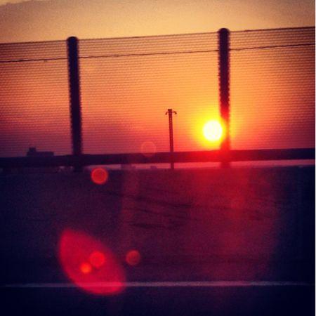 Boston Má Sunset