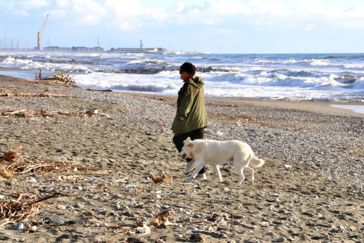 Rear view of man with dog on beach against sky