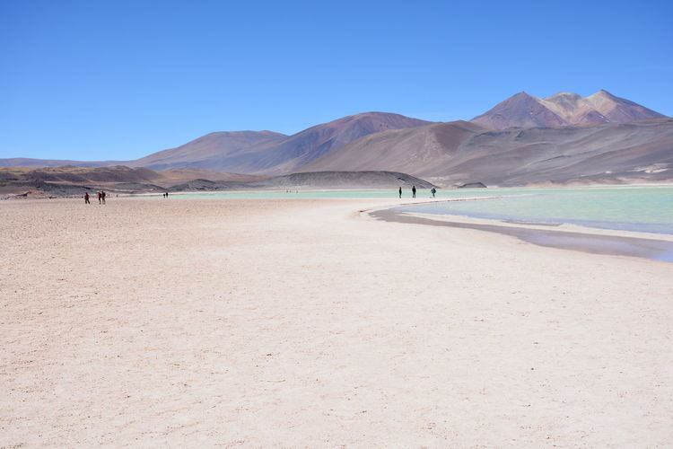 landscape of desert iand lagoon in Atacama desert, Chile Atacama Desert Desert Desert Plants Nature Volcano Landscape Desert Landscape Lagoon Lagoon Water Lake View Landscape