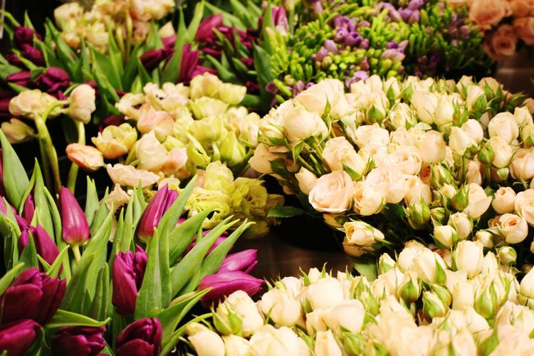 Flowerchild royaleventservices tampaflorist florists Flower Freshness Fragility Beauty In Nature Market Nature Market Stall Flower Head No People Plant Growth Outdoors Close-up For Sale Day