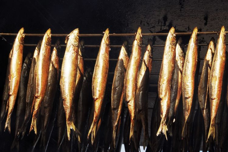 Close-up of fishes in market