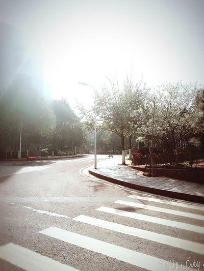 走在安静、干净的大学校园,心情都会变好,你好阳光,你好我的学校💕 Sunlight Road Day City No People Built Structure Street Outdoors Tree Snow Architecture Sky First Eyeem Photo