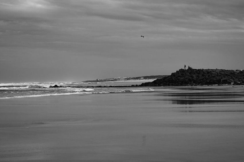 Beach Beach Photography Beauty In Nature Blackandwhite Photography Calm Cloud - Sky Coastline Horizon Over Water Idyllic Landscape Leisure Nature Non-urban Scene Ocean View Outdoors Praia Da Vieira ,Portugal Remote Scenics Sea Shore Sky Tranquil Scene Tranquility Water Wave