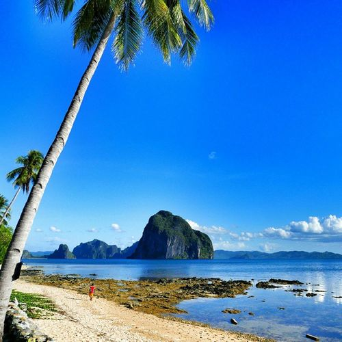 Walking on the Beach Close to Elnido , Palawan and enjoying this colourful paradise 🌞🏄🌊💓😍☺👉🌎🌍🌏 picoftheday holiday sun gettingready instagoodnight instagood sunlight lifeisgood clearsky sunset_pics igdaily tree lovenature bestoftheday photooftheday follow instacool beautiful ocean funny love nature