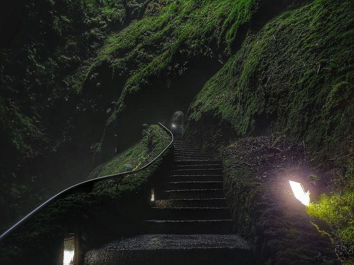 Vulcão Vulcano Lava EyeEm Selects Tree Water