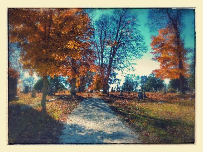 Cemetery Photography Fall Beauty