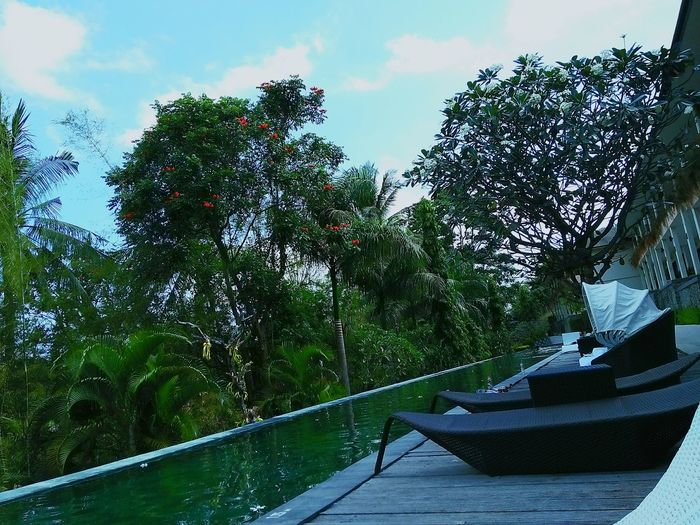 Beach Indnesia Lombok Suny Day Water Poolside Relaxing