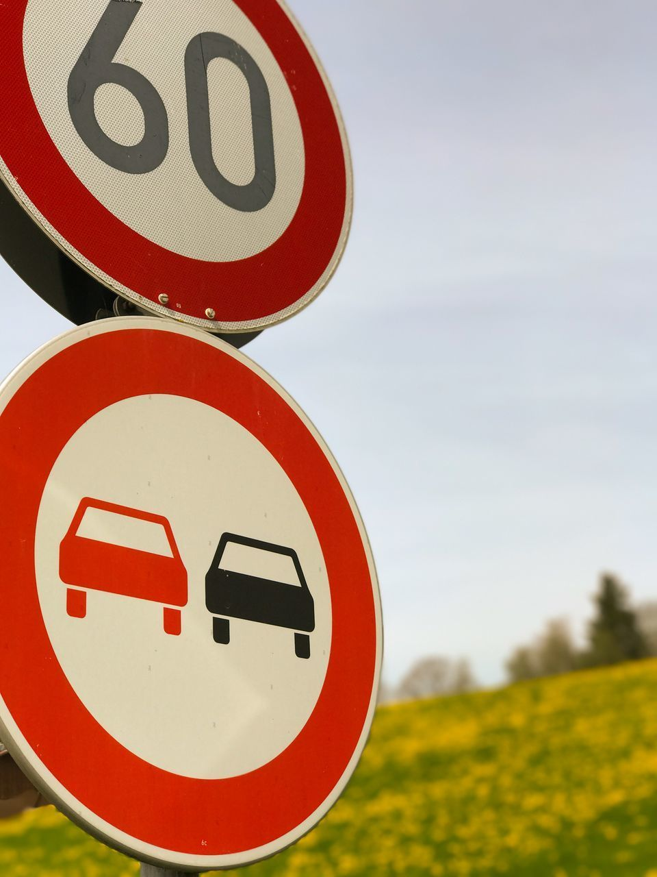 road sign, circle, communication, guidance, warning sign, speed limit sign, focus on foreground, red, day, no people, close-up, outdoors, sky