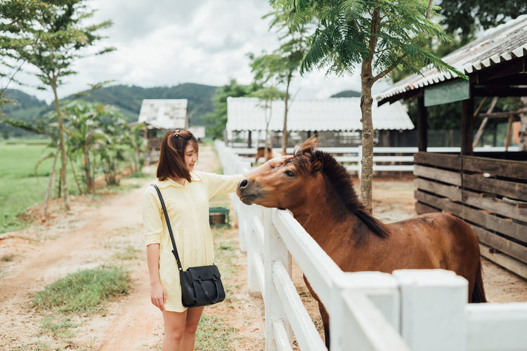 Woman Touching Horse At Stable