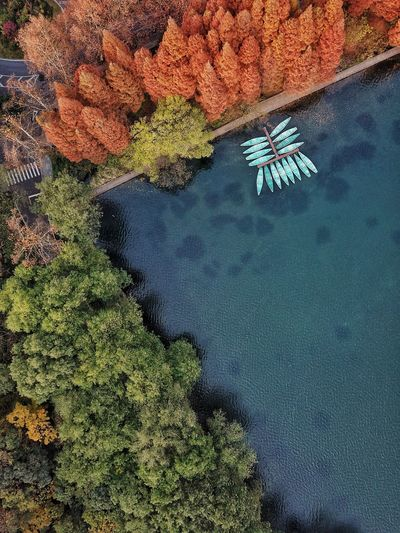 High Angle View Water Outdoors Beauty In Nature Day Nature Tranquil Scene No People Tranquility Aerial View Scenics Beach Sea Vacations Hangzhou Westlake Lifestyles