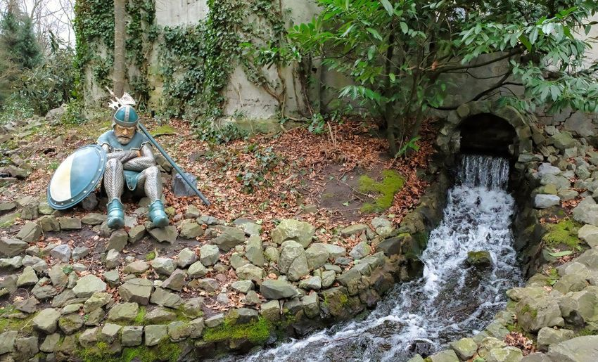 Attraction theme park the Efteling, Kaatsheuvel, the Netherlands. Plant Representation Tree Art And Craft Nature Human Representation Solid Forest Sculpture Rock Day Growth Water Statue No People Creativity Rock - Object Land Male Likeness Flowing Water Outdoors Flowing