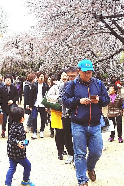 Visitors Sakura Spring2015 Nature Shinjuku Gyoen National Garden Travel Photography Streetphotography Tokyo Japan