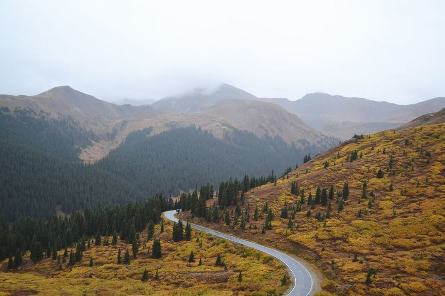 Gloomy Day Colorado Photography Colorado Fall Colors Aspen Independence Pass Mountain Scenics - Nature Beauty In Nature Mountain Range Tree Tranquil Scene Non-urban Scene Landscape Nature Road