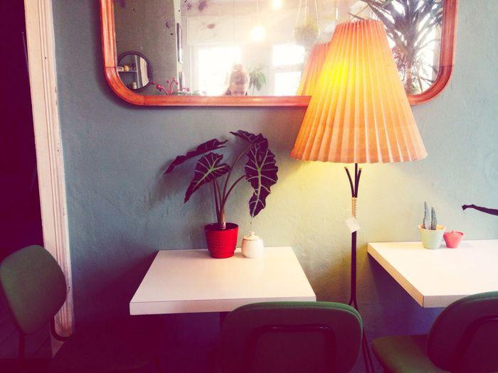Coffee and plants Lighting Equipment Illuminated Home Interior Flower No People Indoors  Urban Exploring Mirror Coffee Time Retro Style Cozy Place Retro Design Berlin
