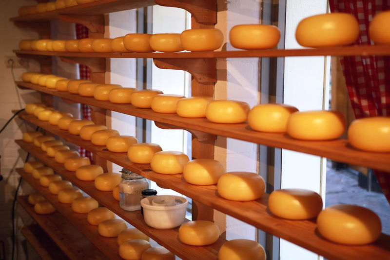 Farm Industry Lines Market Production Cheese Cheese Factory Cheese Farm Cheeses Dairy Dairy Farm Dairy Product Factory Food Freshness Healthy Eating Large Group Of Objects Milk Milk Product Old Old Buildings Product Production Line Ripening Shelf