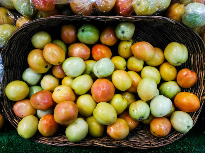 Tomato Tomatoes Freshtomatoes