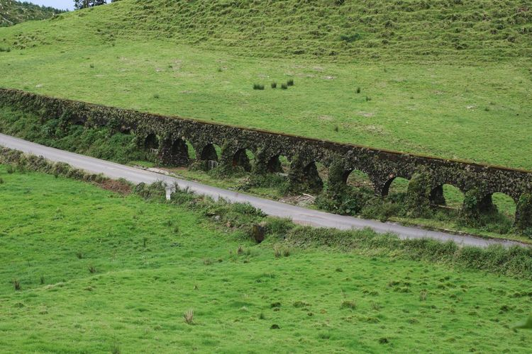 Green Color Grass High Angle View Field Nature Outdoors Beauty In Nature Aqueduct Ancient Aqueduct Roman Roman Aqueduct Azores Islands Azores Beauty Landscape_Collection Floral Photography Azores, S. Miguel Landscape_photography Beauty In Nature Landscape Watersupply Ancient Technology Day No People Road Green Island