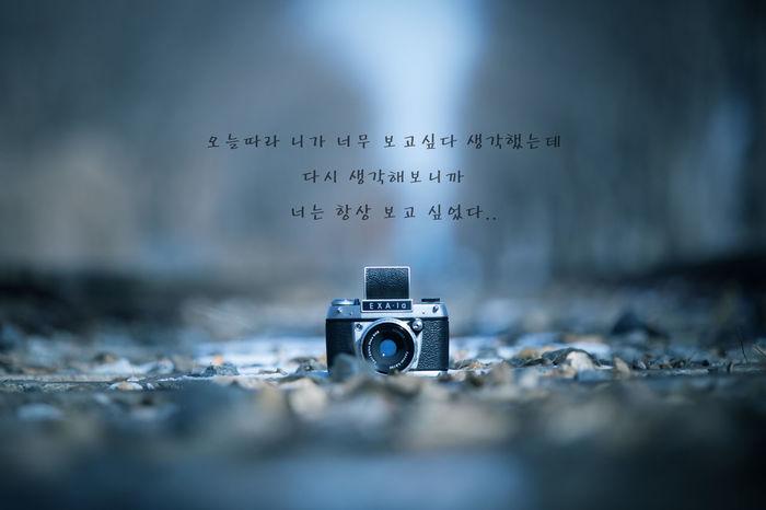기찻길위로.. Korean Language Koreanlanguage Korea Trainrail Tree Landscape Exa Selective Focus Camera - Photographic Equipment No People Photography Themes Close-up Outdoors Day