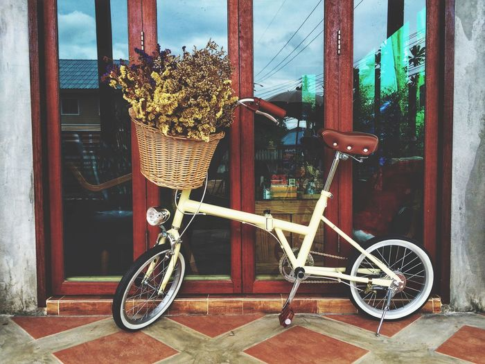 Bicycle Transportation Mode Of Transport Land Vehicle Day Stationary No People Basket Outdoors Bicycle Basket Built Structure Architecture Building Exterior Wheel Bicycle Rack EyeEm Selects Nuiecircle Vintage Style Dry Flower  my bicycle ❤️ go around.