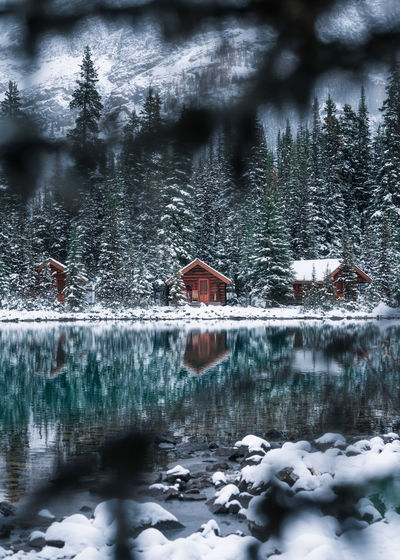Reflection of houses and trees in lake during winter
