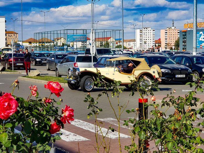 Transportation City Architecture Building Exterior Nature Plant Flower Car Real People