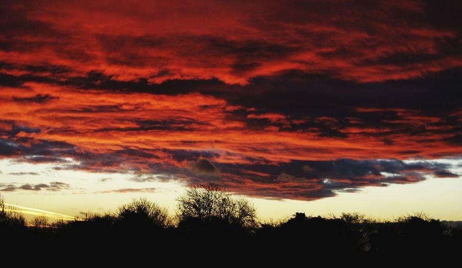Dramatic Sky 🌄
