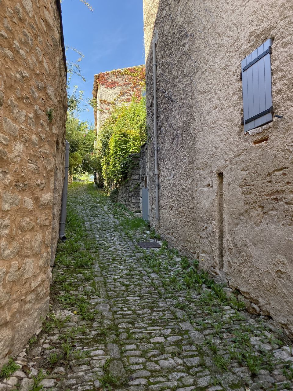 architecture, built structure, building exterior, wall - building feature, wall, building, direction, day, no people, the way forward, footpath, plant, old, nature, stone wall, history, sky, the past, outdoors, window, alley