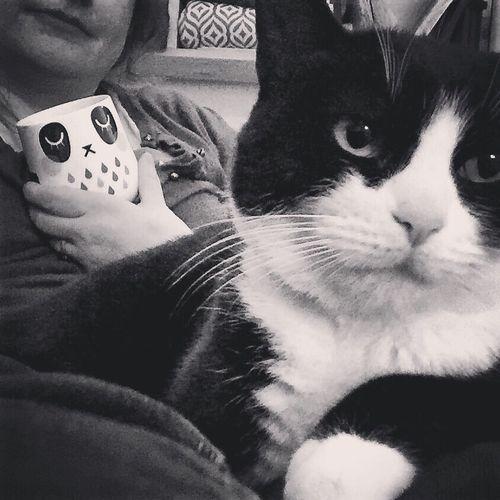 Blackandwhite Black And White Blackandwhite Photography Black And White Cat Black&whitecat Camila Prada Relax Relaxing Enjoying Life Showcase: March