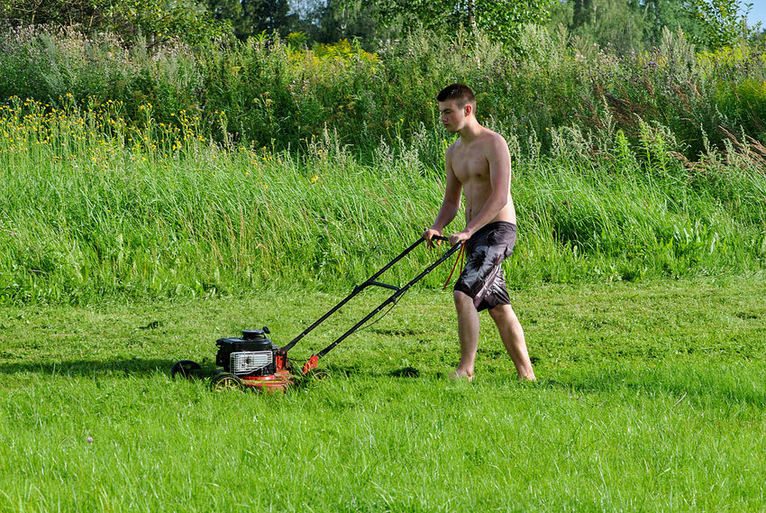 Garden Work Adult Adults Only Boy Day Full Length Garden Grass Holding Lawnmower Lawnmowerman Leisure Activity Mower Nature One Man Only One Person Outdoors People Real People Shirtless Spraying Standing Summer Activity Tree Young Adult Business Stories