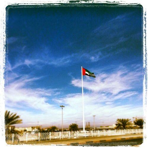 عاش العلم الشارجة الشارقة الامارات uae shj flagisland
