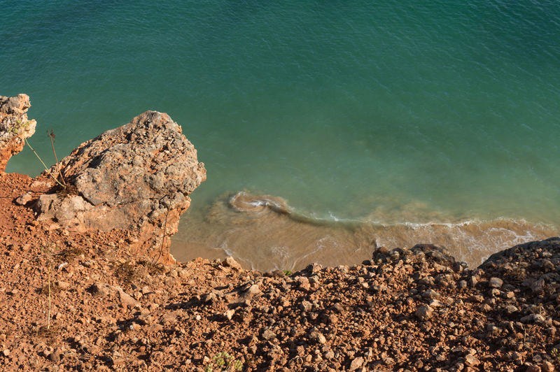 High Angle View Of Crab On Rock By Sea