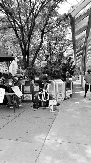 A street electric cellist. City Life City Black And White Photography People Musician Washington, D. C. Street Photography Street Musician MonochromePhotography Embrace Urban Life Resist