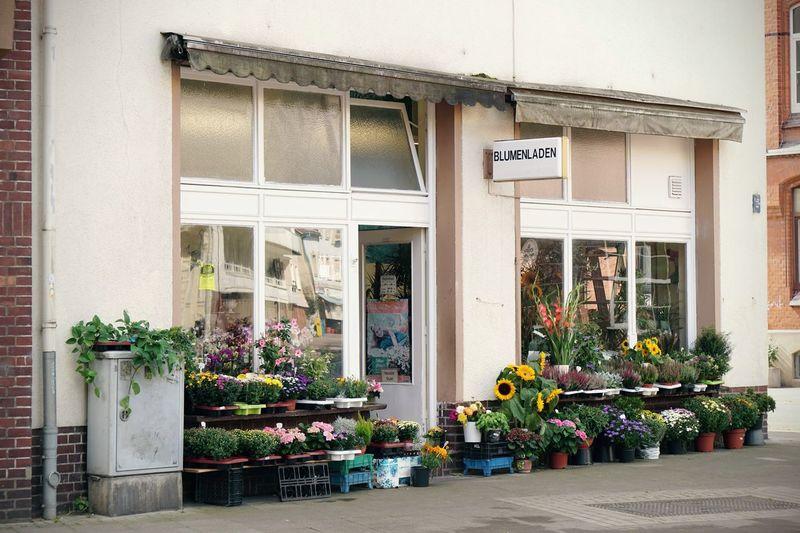 Blumenladen in Hannover Blumenladen City Life Editorial  Exterior Florist Flower Shop Flowers German Germany Hannover Shop Urban