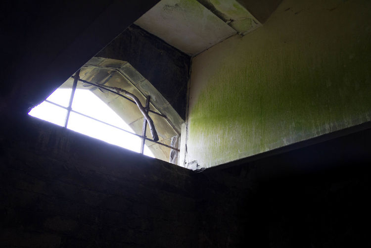 Architecture Building Ceiling Church Dark Growth Illuminate Illuminated Interior Low Angle View Ruin Ruined Window